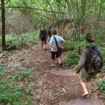 Kirirom National Park trekking tour