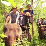 Luang-Prabang-ElephantRide_Elizabeth-Baugh