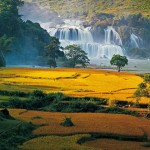 North Vietnam Family Discovery