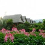 Unseen Laos
