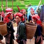 Sapa Hidden Trail to Red Dzao Village