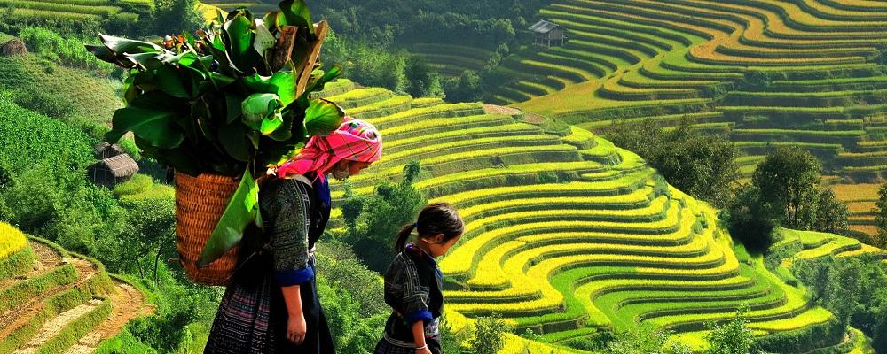 Sapa Vietnam Tours