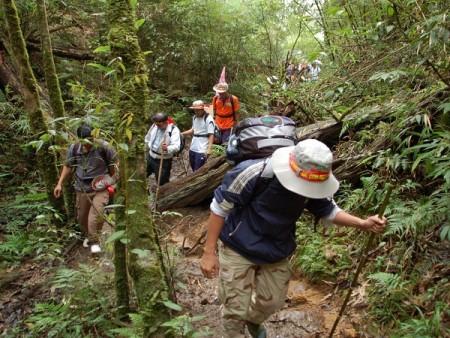 Trekking Fansipan